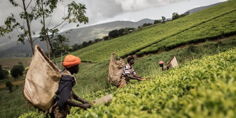 La Banque mondiale reprend son aide budgétaire au Malawi