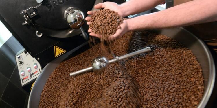 La récolte de café devrait atteindre un record en 2016-2017