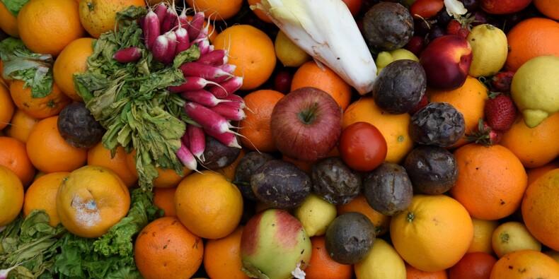 Les fruits et légumes ont coûté moins cher cet été
