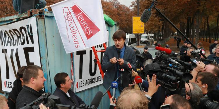 """Glyphosate: Hulot pour """"une agriculture intensive en emploi plutôt qu'en engrais"""""""