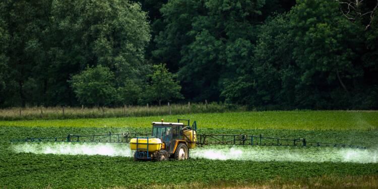 Lancement d'une association d'aide aux victimes de pesticides