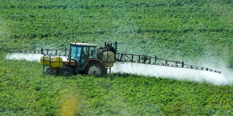 "Interdiction du glyphosate: ""le gagnant"" sera l'industrie phytosanitaire"