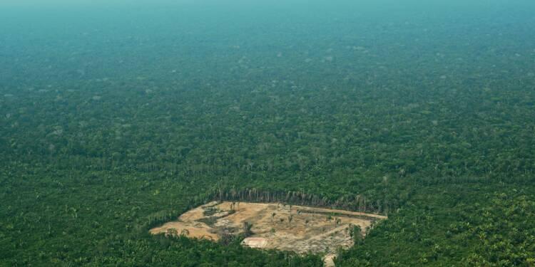 """Déforestation au Brésil: le gouvernement dénonce des chiffres """"sensationnalistes"""""""