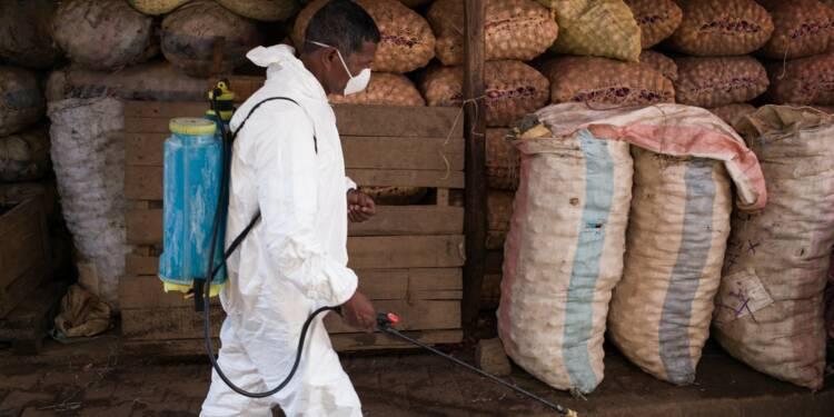Madagascar: l'épidémie de peste continue de se propager