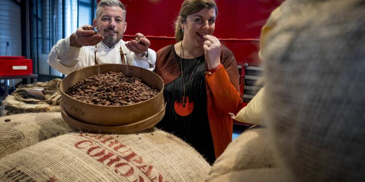Produire son propre chocolat: le nouveau Graal des amoureux du cacao