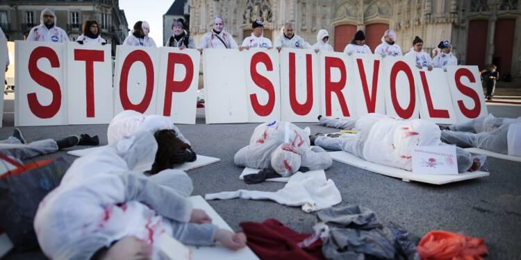 ND-des-Landes: pour l'exécutif, l'heure de la décision a sonné
