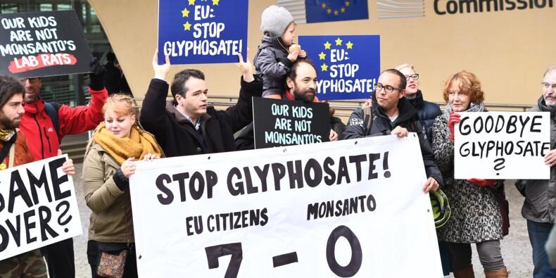"""Glyphosate: la France """"autorisée"""" à prendre des mesures d'interdiction"""