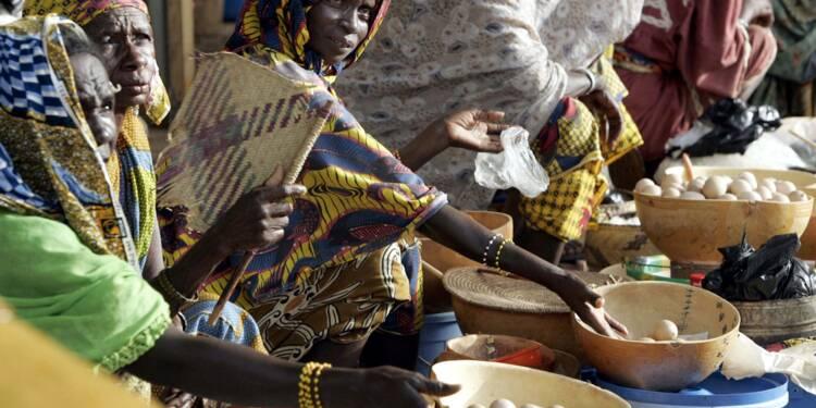 Les petits paysans victimes du réchauffement et de la faim