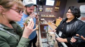 La Californie devient instantanément le plus gros marché mondial de marijuana