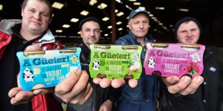 Du pis au pot: des éleveurs laitiers créent une marque de yaourts pour valoriser leur production