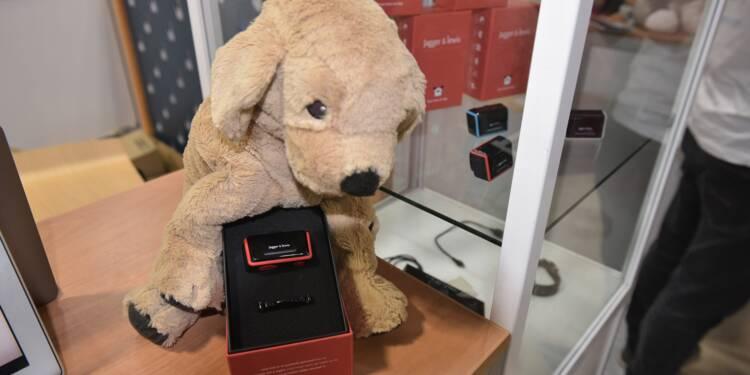 Technologie: chiens et chats n'échappent pas au tout connecté