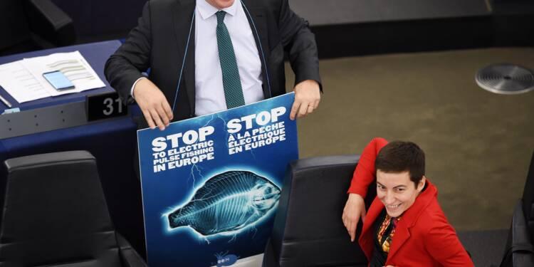 Le Parlement européen veut interdire la pêche électrique dans l'UE