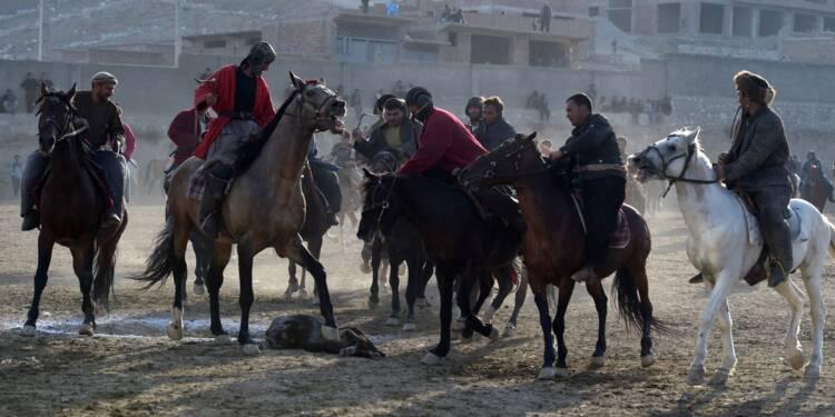 Afghanistan: les chevaux du bouzkachi, bêtes de scène et de guerre