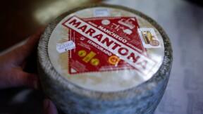 """Les fromagers espagnols défendent leur Manchego """"mal plagié"""" au Mexique"""
