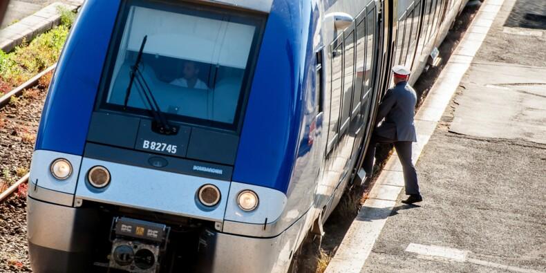 """Réforme de la SNCF: les usagers demandent le maintien d'un """"grand nombre"""" des petites lignes"""