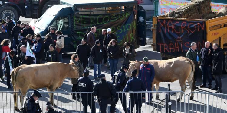 Mercosur: manifestations d'agriculteurs contre le projet d'accord
