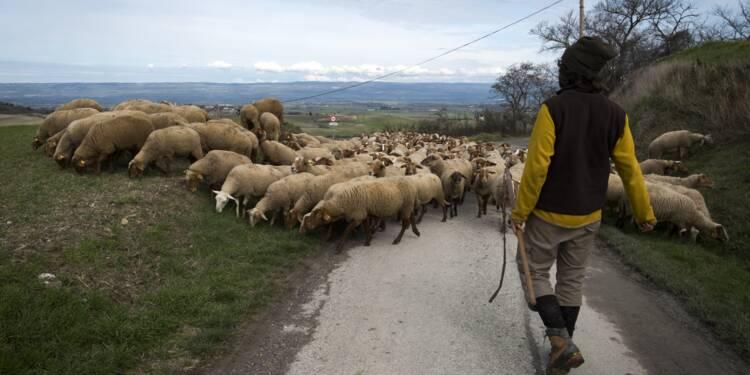 """Zones défavorisées: le """"sentiment d'injustice"""" des agriculteurs de La Piège"""