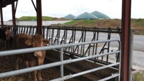 Des déchets organiques au biogaz, parcours du combattant pour un agriculteur