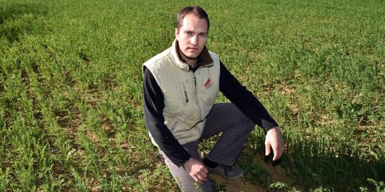 Financer le foncier, un défi pour les jeunes agriculteurs