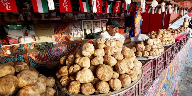 Pépites du désert: à Koweït, l'incroyable succès du marché aux truffes