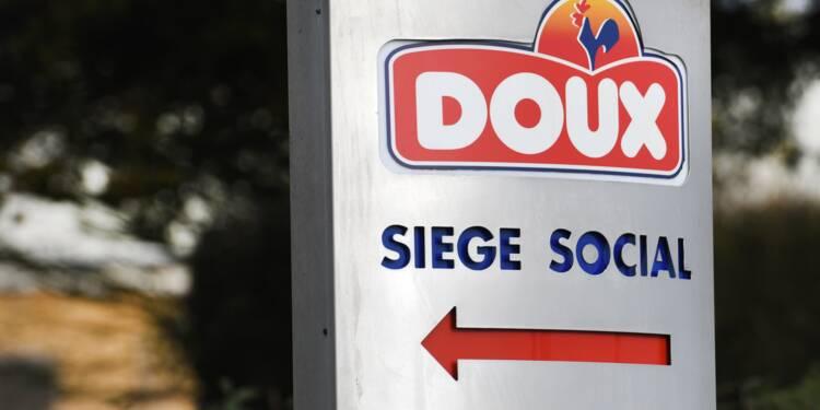 Doux: LDC précise son offre, un consortium prêt à reprendre 900 salariés