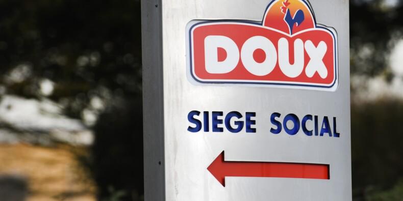 Doux: LDC, au sein d'un consortium, propose de reprendre plus de 900 salariés