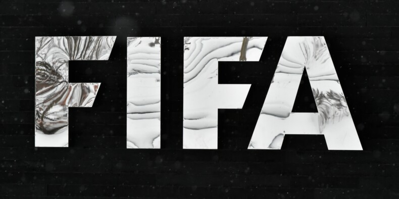 """France-Russie: la Fifa """"réunit les potentielles preuves"""" sur les cris de singe"""