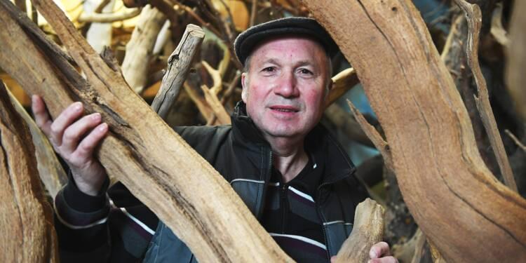 """Hervé Mayon, créateur d'arbres """"aussi vrais que nature"""""""