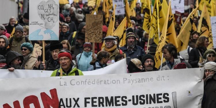 Le préfet de Saône-et-Loire rejette un projet de ferme aux 4.000 bovins