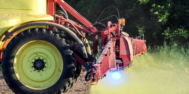 Glyphosate: le ministre de l'Agriculture évoque une loi dans 3 ans si pas d'avancée d'ici là