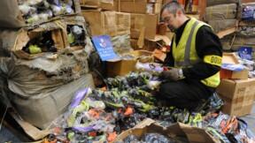 La contrefaçon coûte 60 milliards d'euros à 13 secteurs de l'économie européenne
