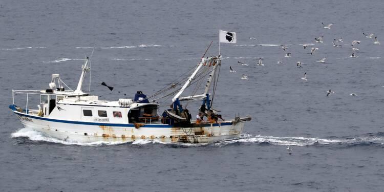 Les pêcheurs rassemblés à Sète, au chevet d'une Méditerranée en péril