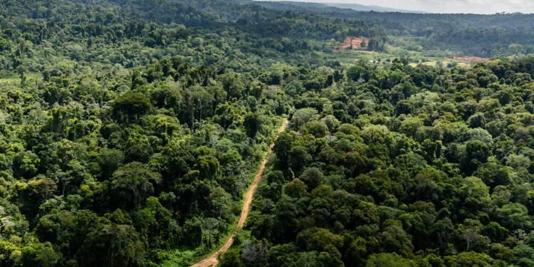 Mines: Nicolas Hulot réticent sur le projet Montagne d'or en Guyane