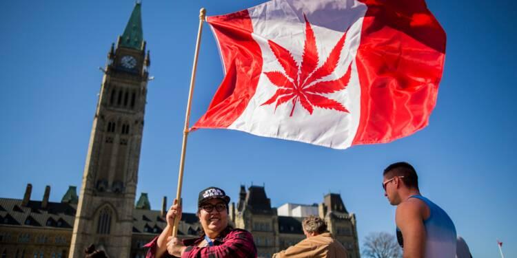 Canada: les titres des entreprises de cannabis planent après la légalisation
