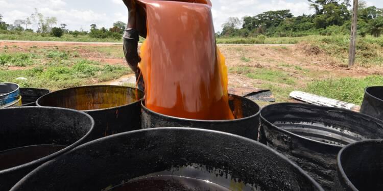 L'huile de palme peut-elle être durable ? Une réunion cruciale à Paris