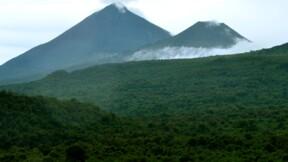 Exploitation illégale de bois en RDC: une ONG demande à la France d'agir