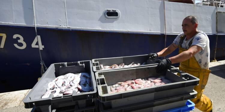 Pêche: Travert va organiser une table ronde pour attirer les jeunes
