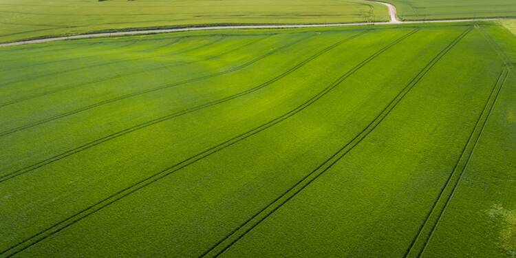 """France: le """"produit intérieur brut"""" de l'agriculture remonte de 8,2% en 2017"""