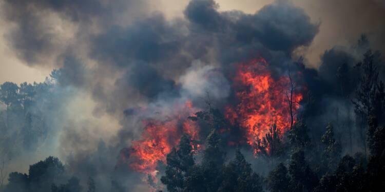 Le Portugal peine à maîtriser l'incendie de forêt dans l'Algarve