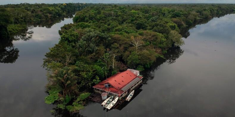 Au coeur de l'Amazonie, vivre dans la plus grande jungle du monde
