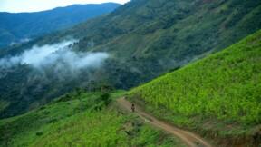 La Colombie reste le premier producteur de cocaïne du monde