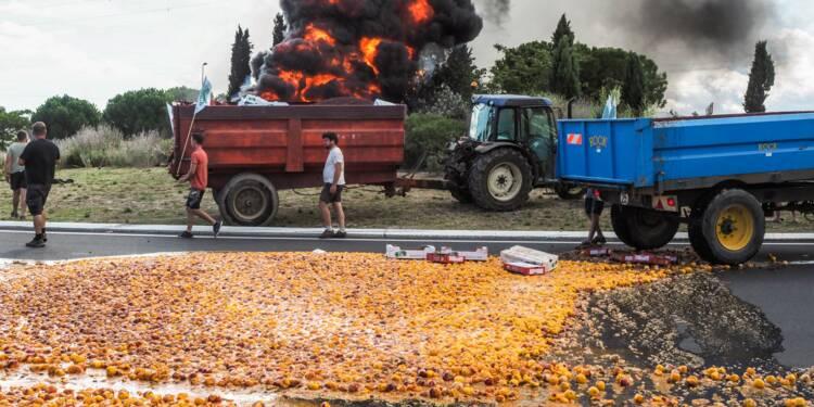 Travail saisonnier: dans plusieurs régions, les agriculteurs s'opposent à une mesure du budget