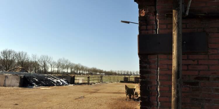 Pays-Bas: les dégâts de séismes mettent de l'eau dans le gaz