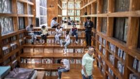 A Pékin, une étonnante bibliothèque perdue dans la forêt