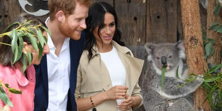 Harry et Meghan à Sydney: cadeaux pour bébé et koalas