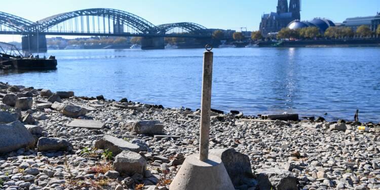 Le transport fluvial et l'industrie au défi du Rhin asséché