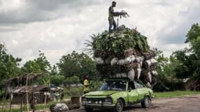 En RDC, l'agriculture laissée à l'abandon s'invite dans la campagne électorale