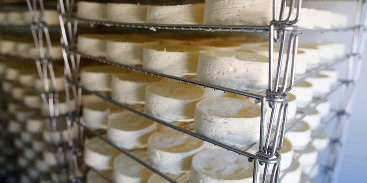 Camembert: après la bataille de Normandie, la guerre du lait cru