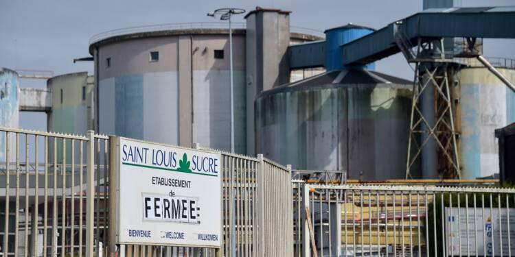 Sucre: Saint-Louis entame la restructuration d'un secteur sinistré