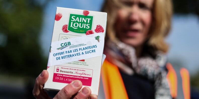 Les betteraviers de Saint-Louis manifestent et en appellent à l'esprit de l'Europe